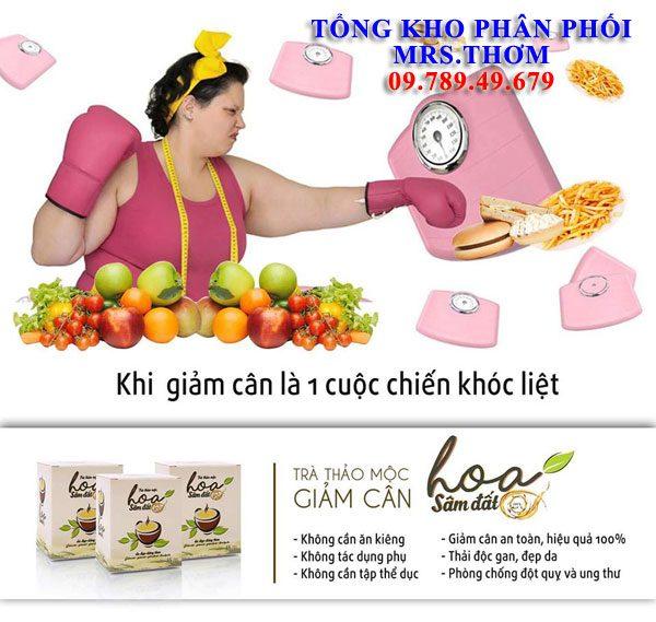 Giam Can Hoa Sam Dat