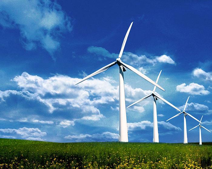 Giới Thiệu Về Công Ty TNHH Năng Lượng Gió Xanh NTT Bởi SKOL