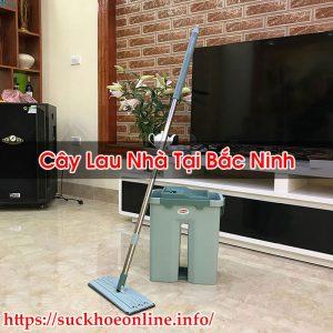Cây Lau Nhà Tại Bắc Ninh