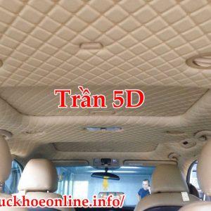 Trần 5D