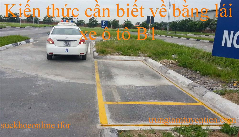 Kiến Thức Cần Biết Về Bằng Lái Xe ô Tô B1 Là Gì- Trung Tâm Tuyên Tiến.