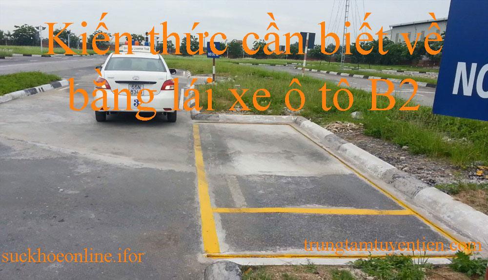 Kiến Thức Cần Biết Về Bằng Lái Xe ô Tô B2 Là Gì- Trung Tâm Tuyên Tiến.